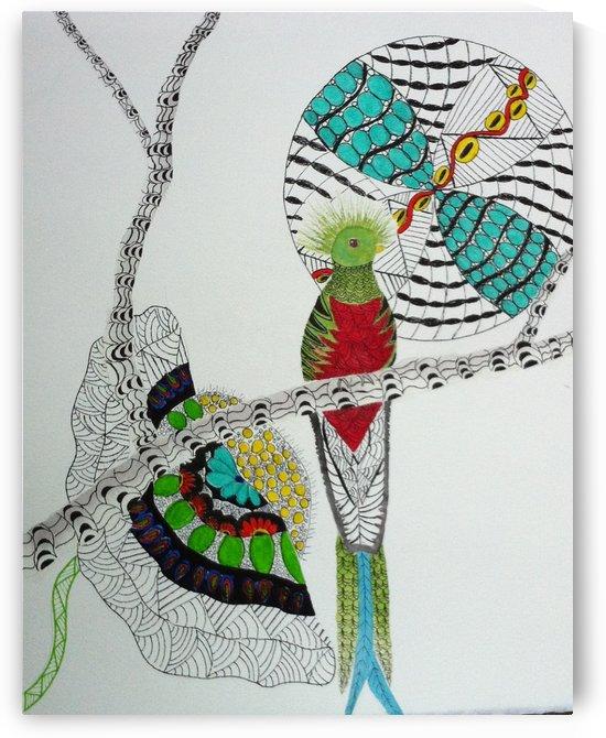 Resplendent Quetzal by Donna Stares