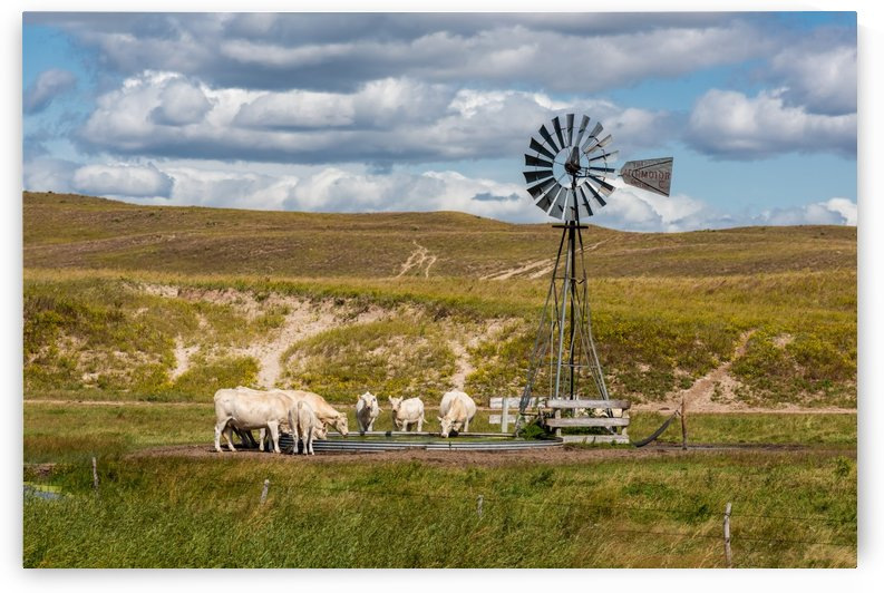 Trails Lead To Water Tanks by Garald Horst