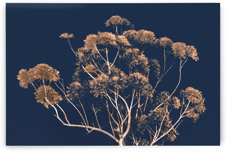 Botanical Decor Artwork by Daniel Ferreia Leites Ciccarino