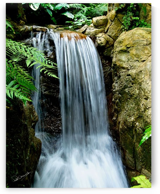 LIttle Hong Kong Park Waterfall by Shadow and Form