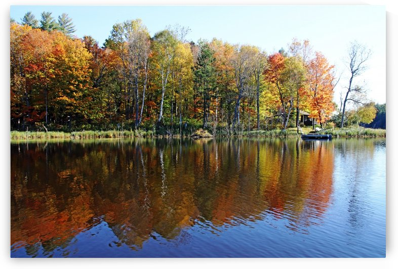 Cabin On The Point In Fall by Deb Oppermann