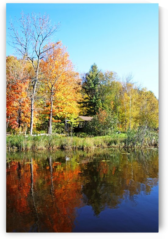 Cabin On The Point In Fall I by Deb Oppermann
