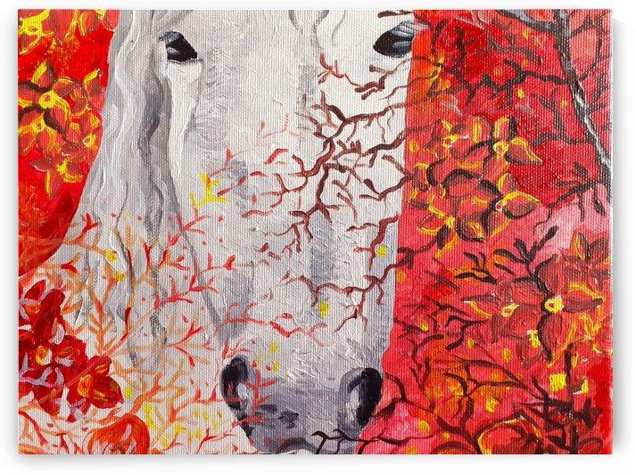 White Horse in my Garden by Maltez
