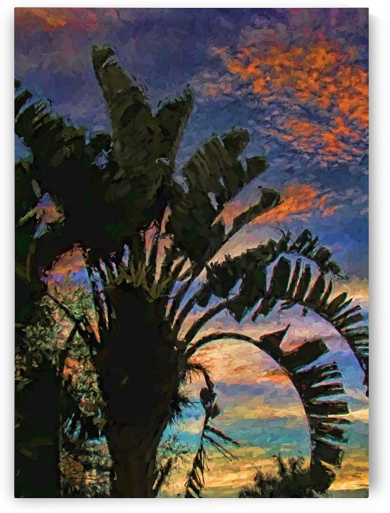 Palm Silhouette Sunset 2 by HH Photography of Florida