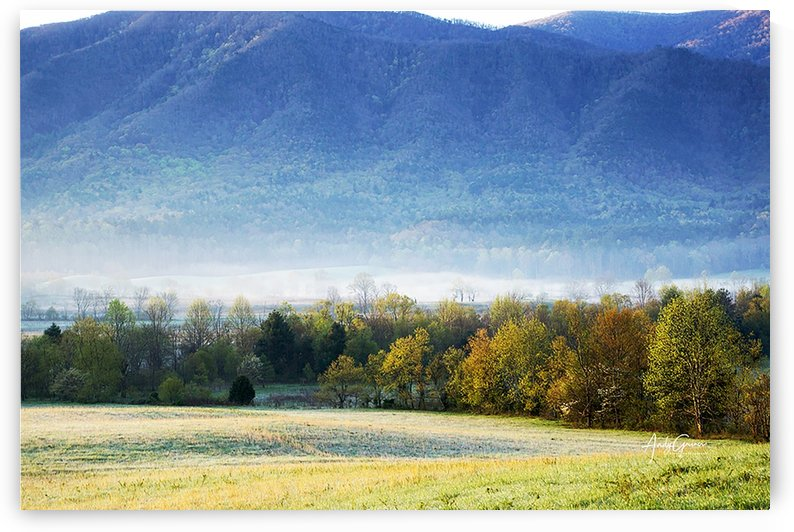 Cades Cove by Andy Griner