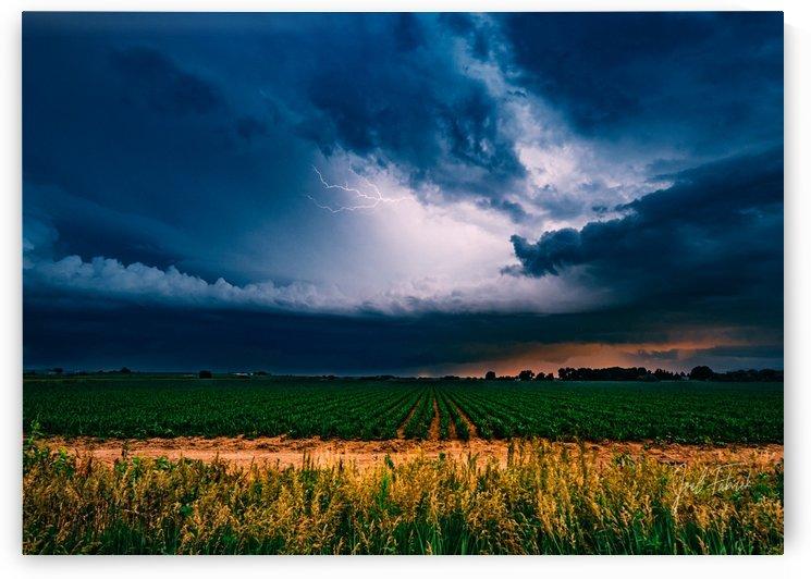 Prairie Lightning by Joel Fabrick