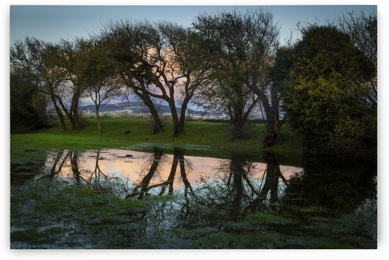Flooding at Blackpill by Leighton Collins