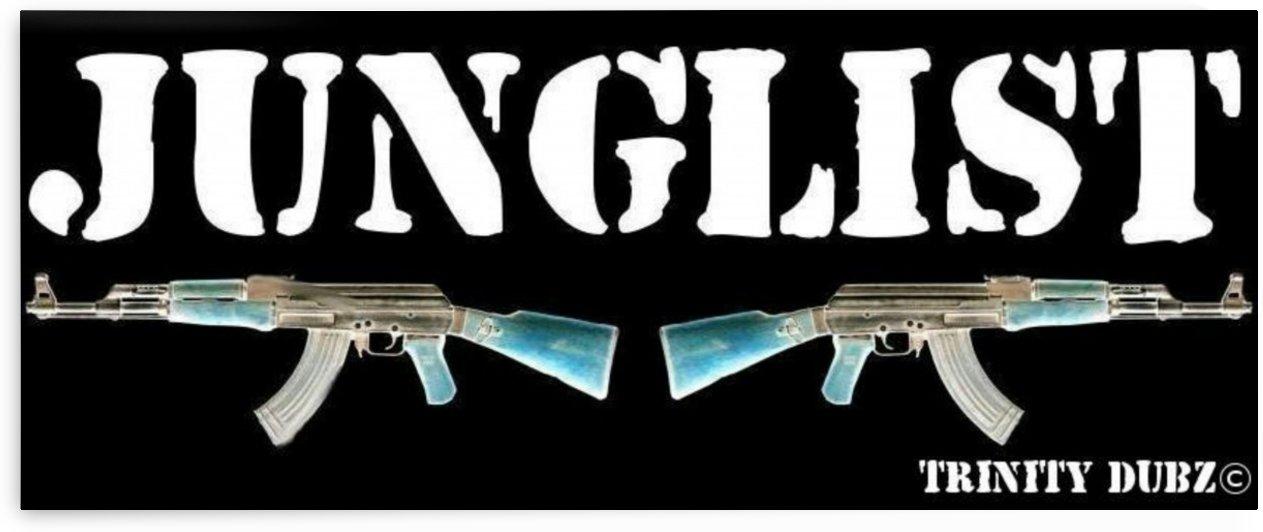 2 Aks - junglist - 1 by KINS