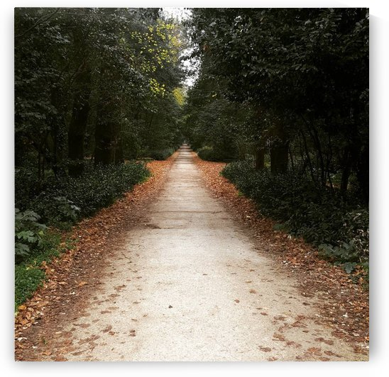A Road Less Traveled by Gemma Stone