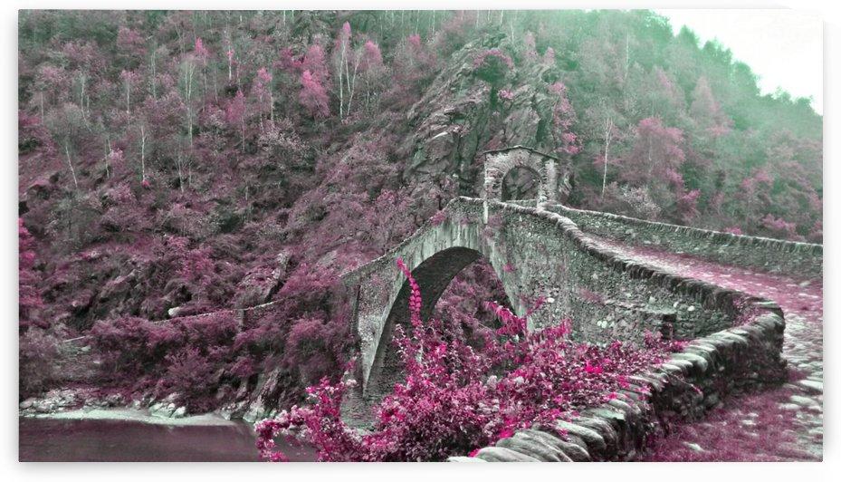 Ponte del Diavolo by Ivan Venerucci Italian Style