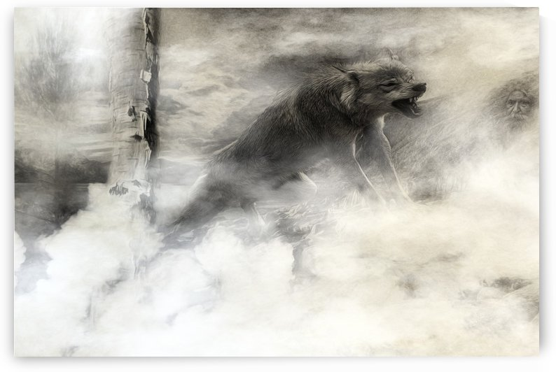 The wolf by Elizabeth Berry