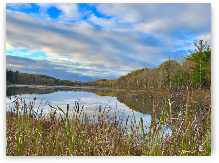 Granville Pond by Brian Camilleri Photography