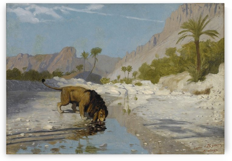 Lion drinking from a Desert Stream by Jean-Leon Gerome