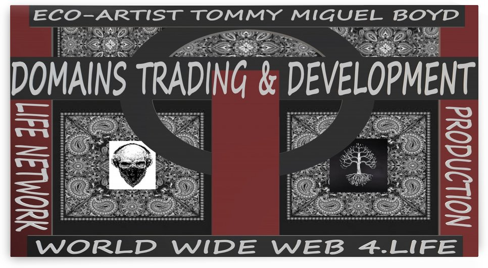 DOMAINS TRADING & DEVELOPMENT   ECO ARTIST TOMMY MIGUEL BOYD by KING THOMAS MIGUEL BOYD