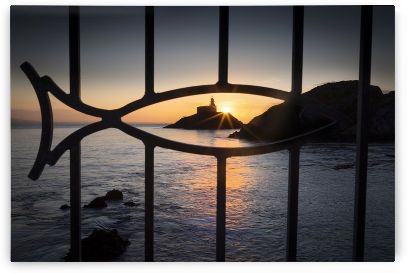 Mumbles lighthouse through a fish by Leighton Collins