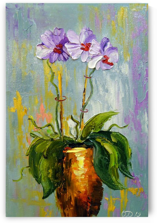 Orchid  by Olha Darchuk