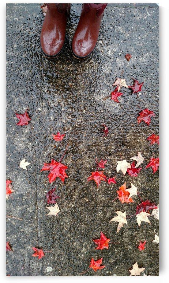 Autumn Rain by Betsi Williston