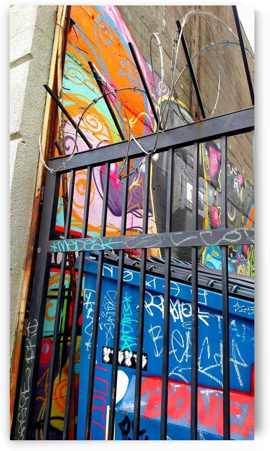 Graffiti Alley by Betsi Williston