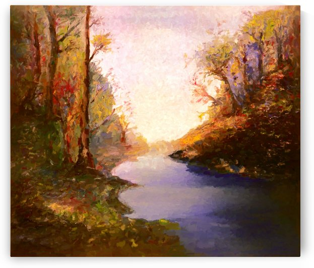 Woods and Creek by Angel Estevez