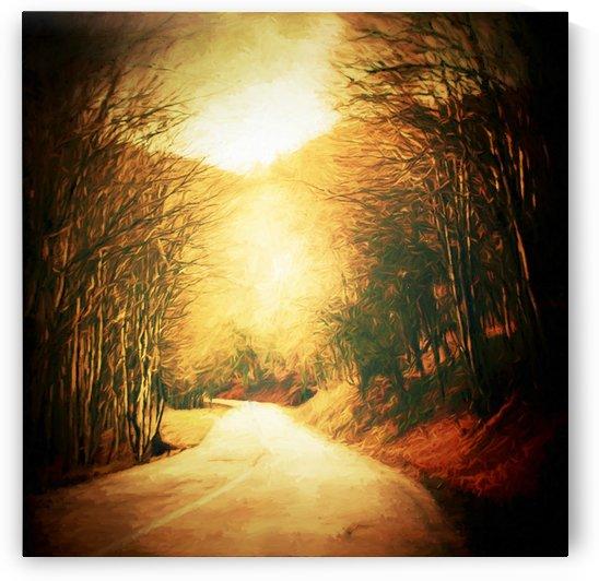 Autumnal Landscape 2 by Angel Estevez