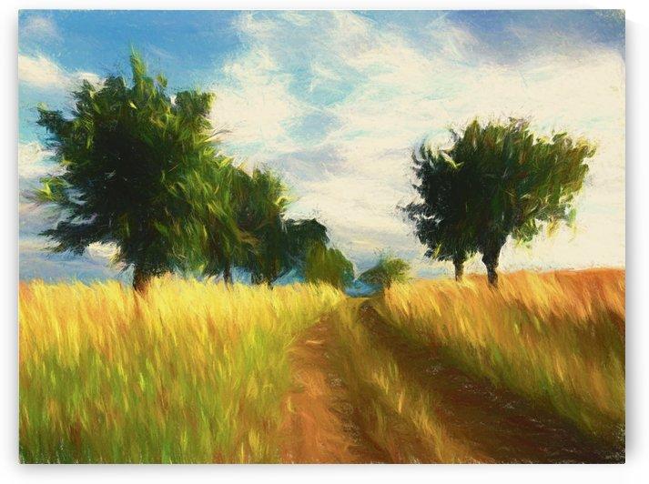 Dawn in the Field 2 by Angel Estevez