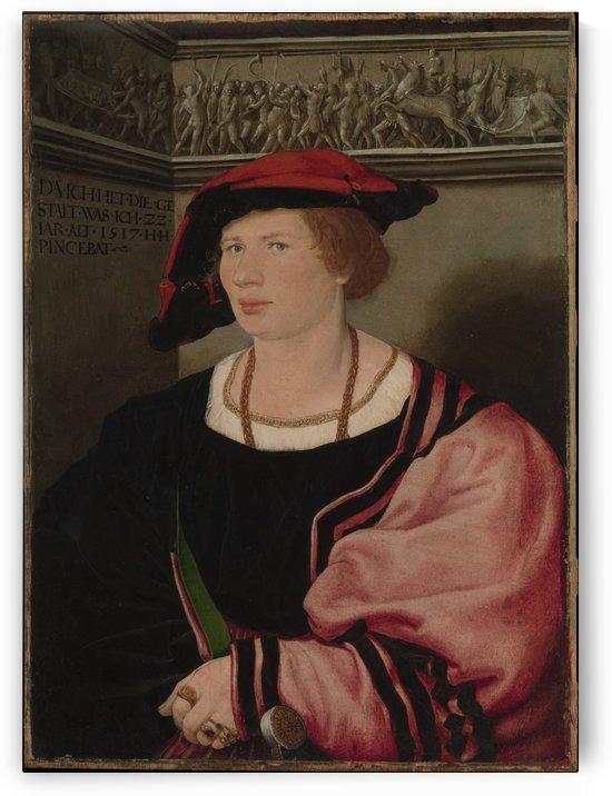 Benedikt von Hertenstein by Hans Holbein