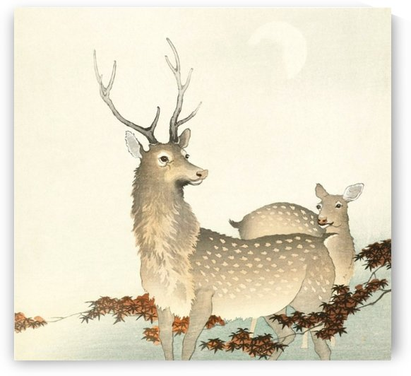 Twin Deers by Smithson
