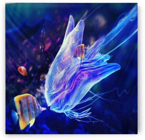 Glowing Jellyfish by elaine harrald