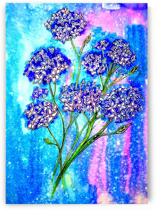 Hydrangeas by Linda Callaghan