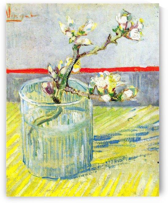 Almond Blossom branch by Van Gogh by Van Gogh