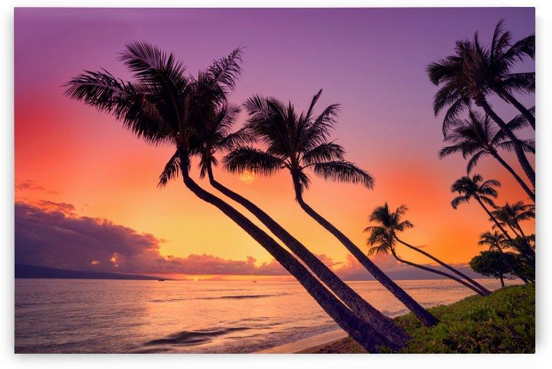 Maui_DSC6495 by Susanne Kremer
