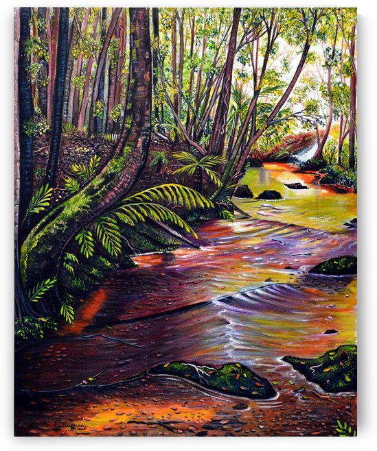 Blue Mountains Stream by Linda Callaghan