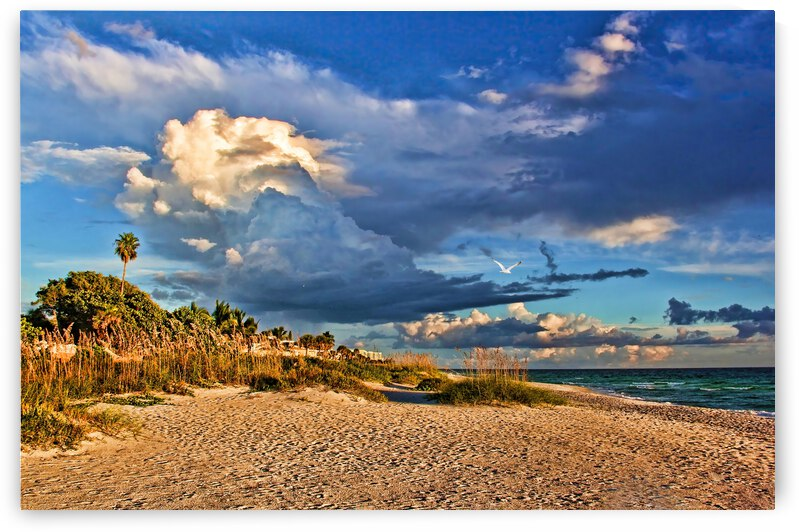 Gulf Shores by HH Photography of Florida