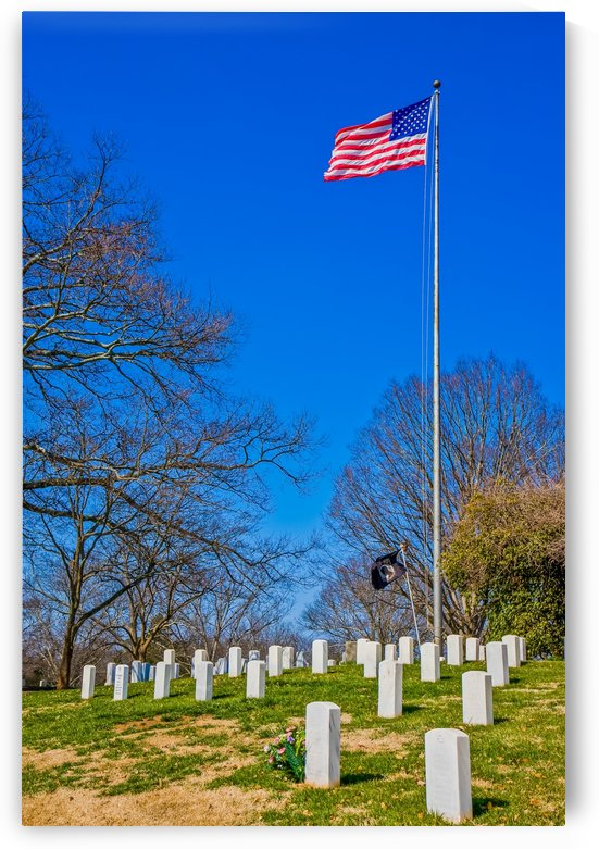American Flag Over Military Graves by Darryl Brooks