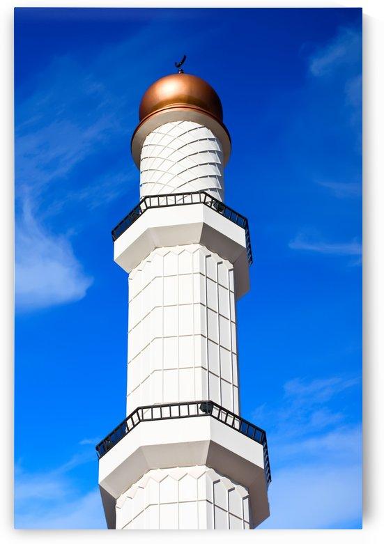 Minaret on Blue by Darryl Brooks