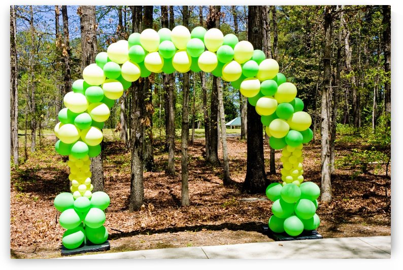 Green and Yellow Balloon Arch by Darryl Brooks