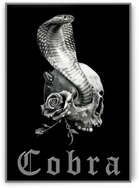 COBRA 3 by Miro Gradinscak
