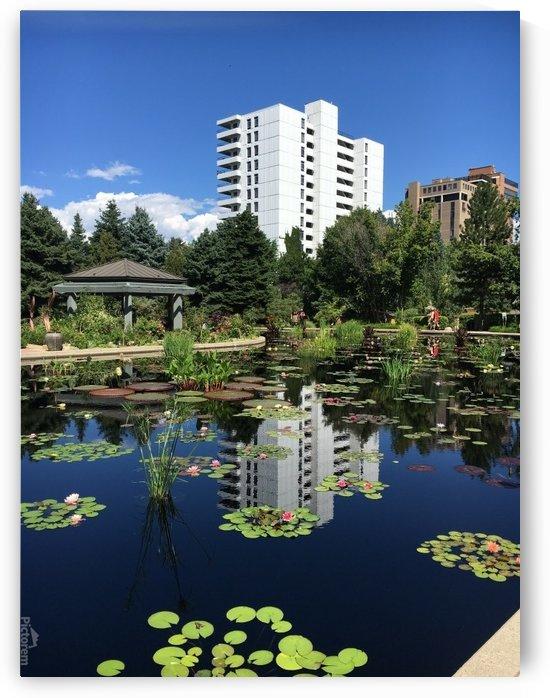Denver-Botanical-Gardens-10 by Dogtown Guy