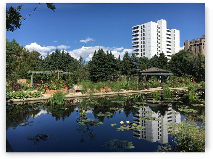 Denver-Botanical-Gardens-8 by Dogtown Guy