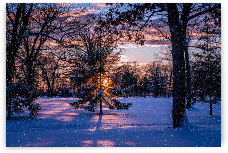 Snow dust in the Park by Ed St Germain