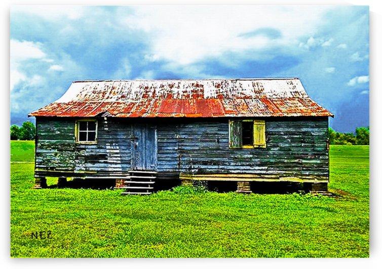 Louisiana by Efrain Montanez