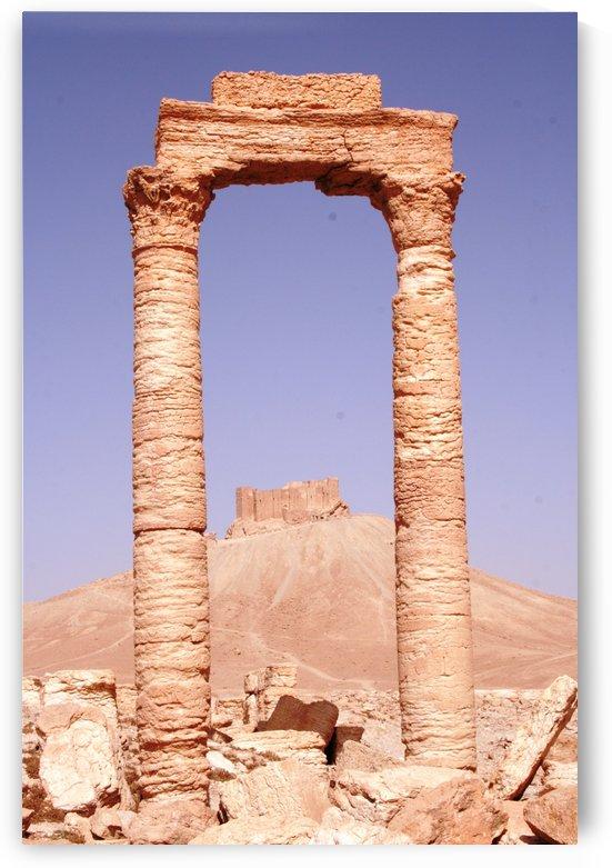 Palmyra by Locspics