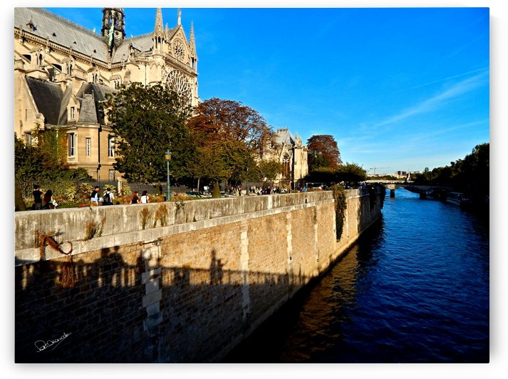 Our Lady By the Seine by Shadow and Form