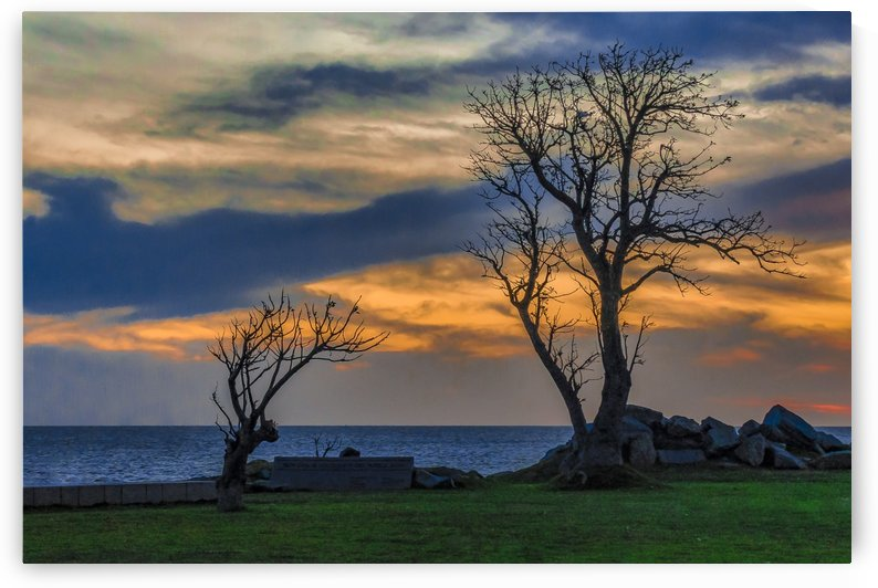 Sunset Scene at Waterfront Boardwalk, Montevideo Uruguay by Daniel Ferreia Leites Ciccarino
