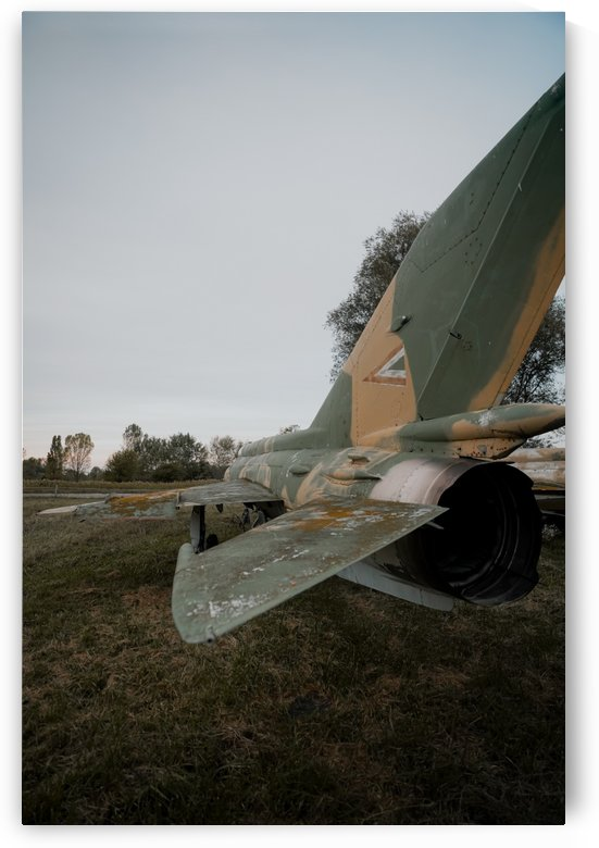 Abandoned Fighter Jet Back by Steve Ronin