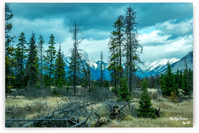 Jasper East Gate by The Big Picture by JD