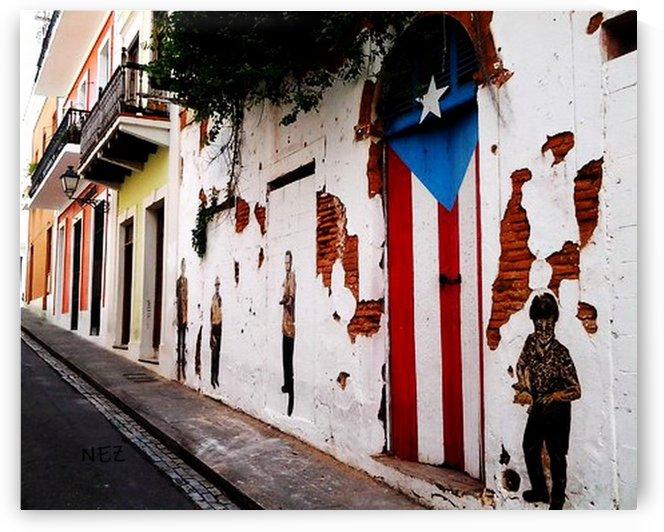 Door Flag by Efrain Montanez
