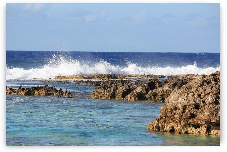 Splash Against Corals by On da Raks