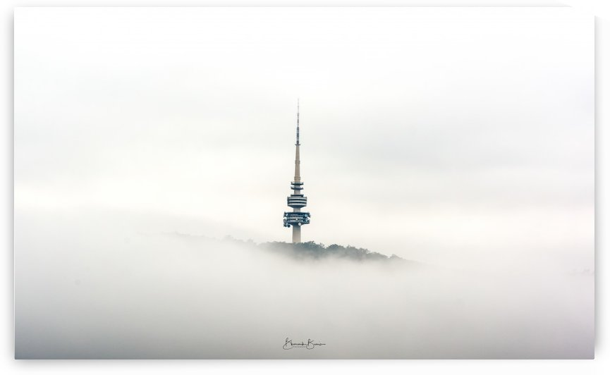 Standing Tall in the fog  by BBCLICKZ - Bhaumik Bumia Photography