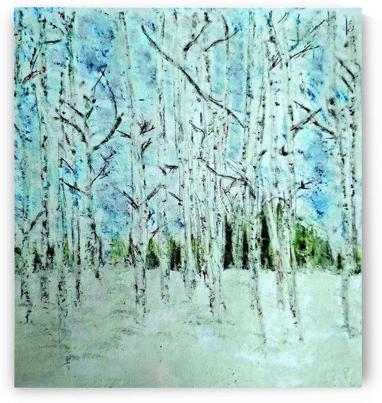 Winter Woods by djjf